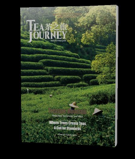 Tea Journey 3D